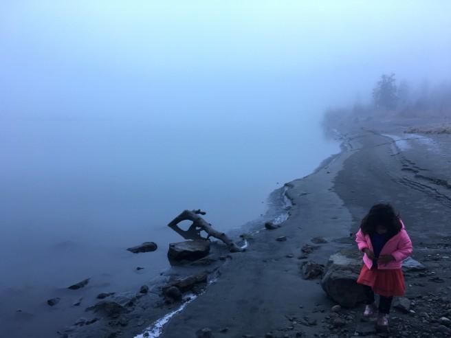 OCT rose fog