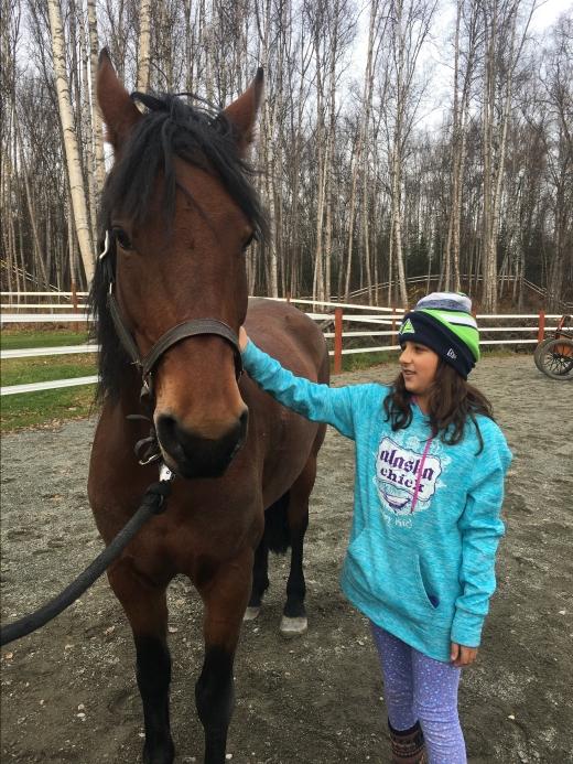 OCT velda with horse